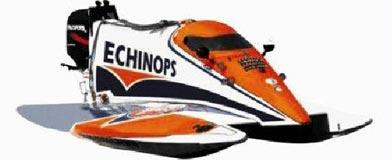 Echinops 8 uren van de Nijl